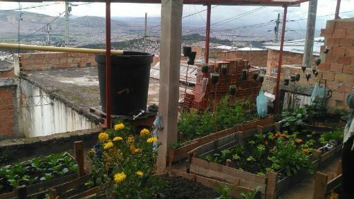 Projet_agriculture_urbaine_Elsa_Gautrain